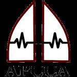 APCCA Logo 1-B with APCCA