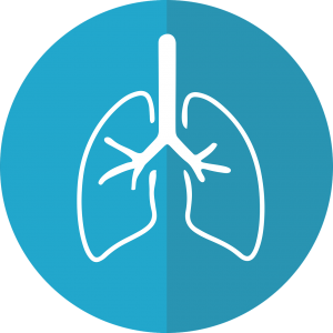 lungs, lung icon, respiration